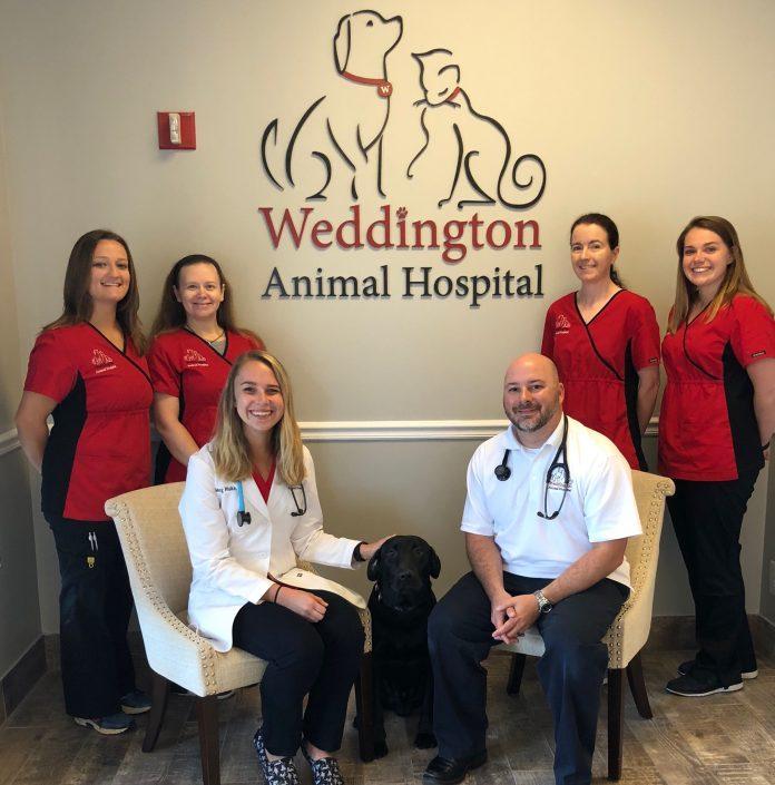 Weddington Animal Hospital welcomes returning Tri W area native as new  Doctor | Tri-W News